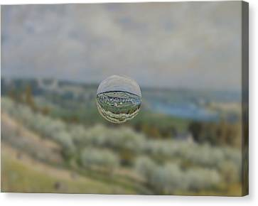 Sphere 24 Sisley Canvas Print by David Bridburg