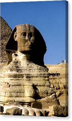 Sphinx Canvas Print by Gary Wonning