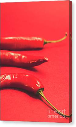 Spice Of Still Life Canvas Print by Jorgo Photography - Wall Art Gallery