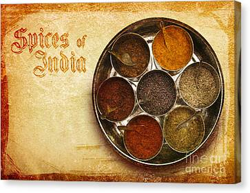 Spices Of India II Canvas Print by Prajakta P