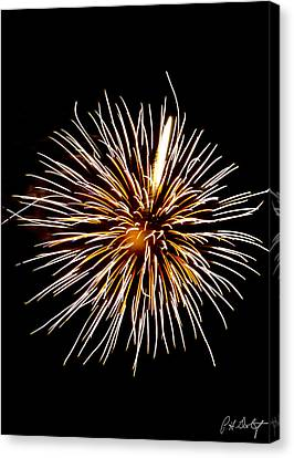 Spider Ball Canvas Print by Phill Doherty