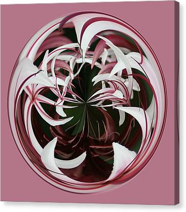 Canvas Print featuring the photograph Spider Lily Orb by Bill Barber
