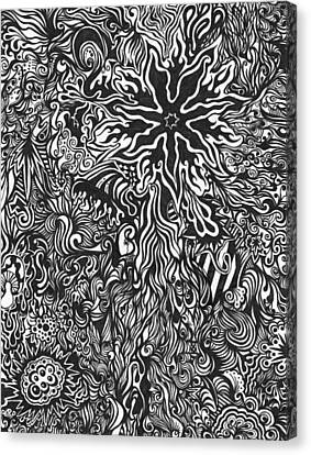 Spider's Web Canvas Print by Mandy Shupp