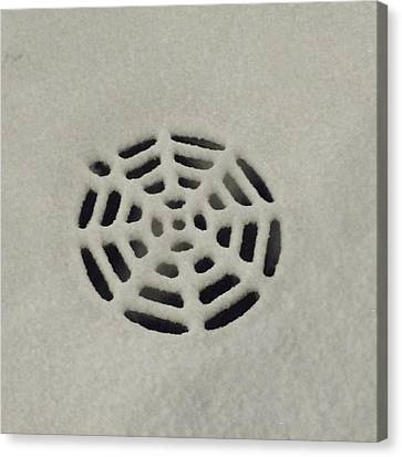 Spiderweb In The Snow Canvas Print