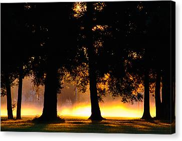 Canvas Print featuring the photograph Spilled Suinshine by Tikvah's Hope