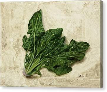 Spinach Canvas Print - Spinaci by Guido Borelli