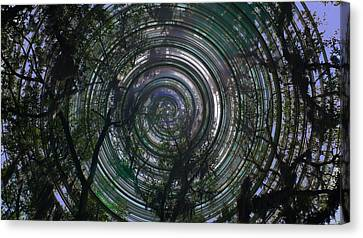 Spinning Canvas Print by David and Lynn Keller