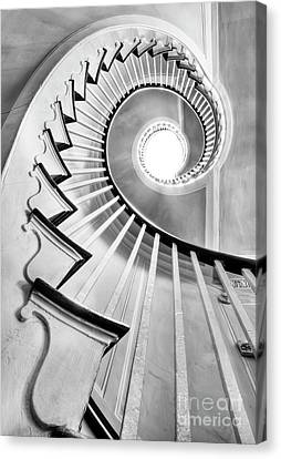 Black And White Canvas Print - Spiral Staircase Lowndes Grove  by Dustin K Ryan