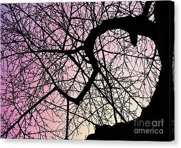 Spiral Tree Canvas Print