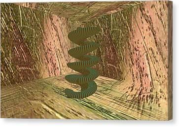 Spiralease Canvas Print by Thomas Smith