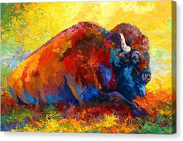 Spirit Brother - Bison Canvas Print by Marion Rose