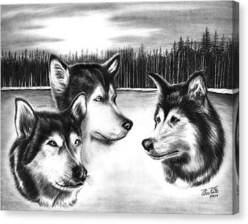 Huskies Canvas Print - Spirit Guides  by Peter Piatt