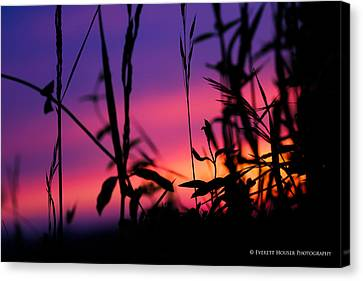 Canvas Print featuring the photograph Spirit Of The Morning by Everett Houser
