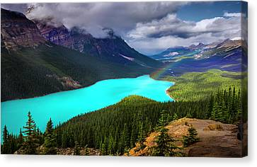 Canvas Print featuring the photograph  Spirit Of The Wolf by John Poon