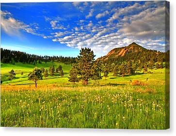 Spiritual Sky Canvas Print by Scott Mahon