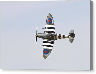 Spitfire Mk959  Canvas Print by Shoal Hollingsworth