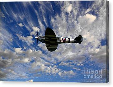 Spitfire Skies Canvas Print by Nichola Denny
