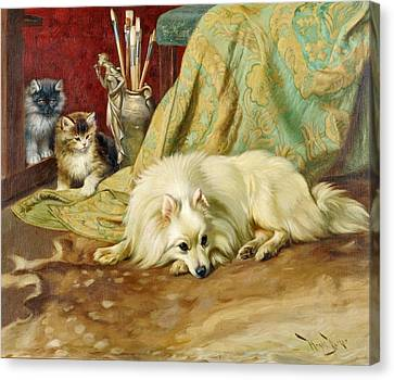 Spitz Dog With Two Kittens Beside  Canvas Print by MotionAge Designs