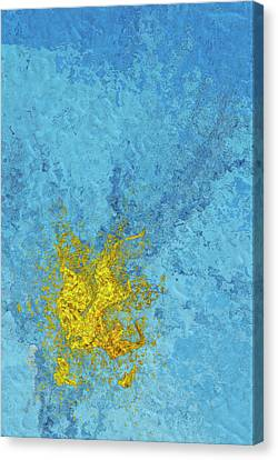 Splash 2 Canvas Print by Jack Zulli