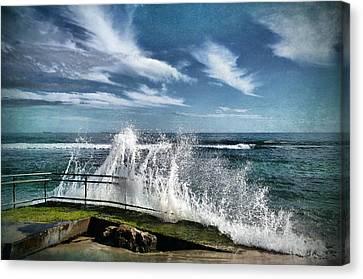 Splash Happy Canvas Print by Kym Clarke