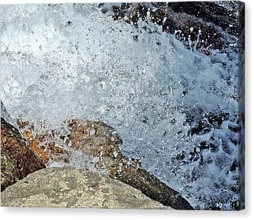 Canvas Print - Splash by Lynda Lehmann