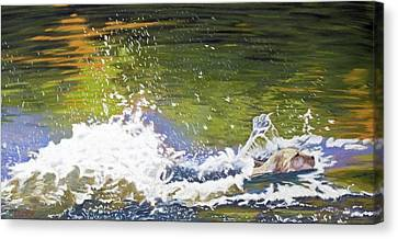 Canvas Print featuring the painting Splash by Robert Decker