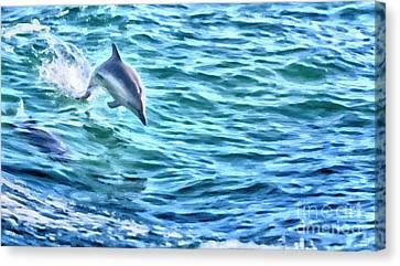 Splashing Dolphin Canvas Print by David Millenheft