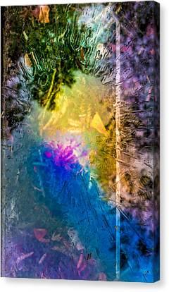 Splashtop Display II Canvas Print by Tim Casara