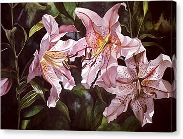 Splendor In Pink Canvas Print by Alfred Ng
