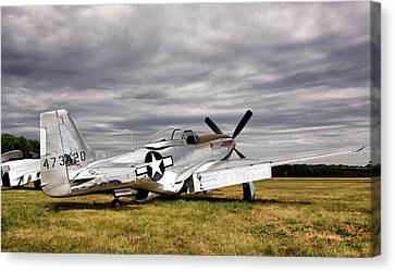 Vintage Air Planes Canvas Print - Splendor In The Grass by Peter Chilelli