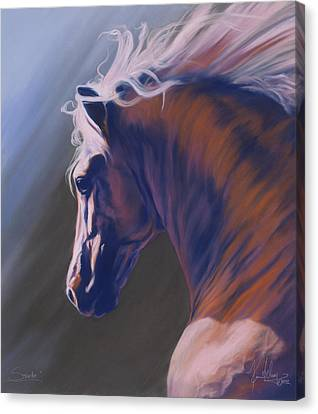 Splendor Canvas Print by Kim McElroy