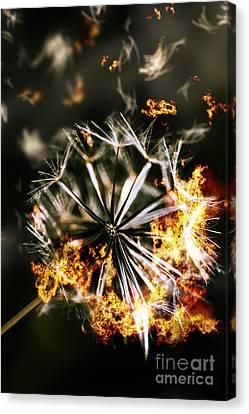 Splinters Of Finality Canvas Print by Jorgo Photography - Wall Art Gallery