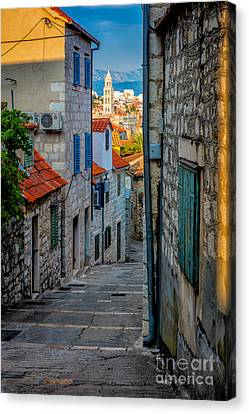 Split From Marjan Hill Canvas Print