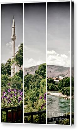 Split Landscape Canvas Print