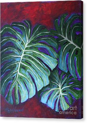 Split Leaf Philodendron Canvas Print by Phyllis Howard