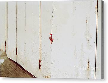 When One Door Closes... Canvas Print