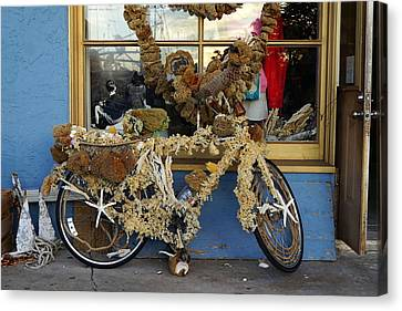 Sponge Bike Canvas Print by Laurie Perry