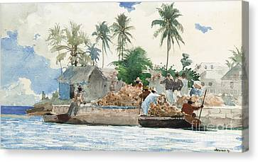 Pencil On Canvas Print - Sponge Fisherman In The Bahama by Winslow Homer