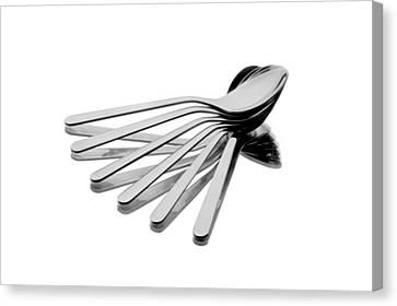 Spoon Fan Canvas Print by Gert Lavsen