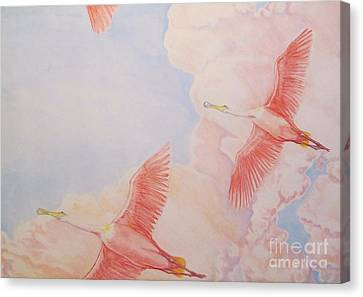 Spoonbill Skies Canvas Print by Sue Bonnar