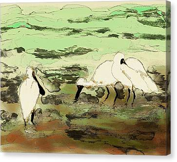 Sombre Canvas Print - Spoonbills - Cloudy Day by Huth Anne