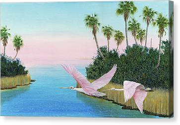 Spoonbills In Flight Canvas Print by Kevin Brant