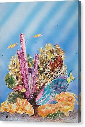 Spotlight Parrotfish Canvas Print by Tanya L Haynes - Printscapes