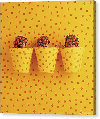 Spotted Pots Canvas Print