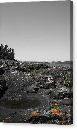 Spotted Rocks Canvas Print