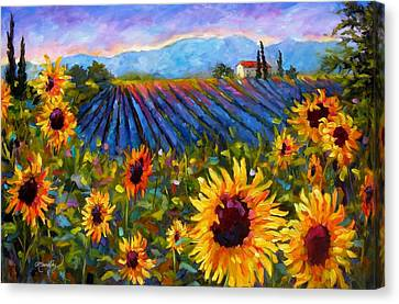 Spread A Little Sunshine Canvas Print by Chris Brandley