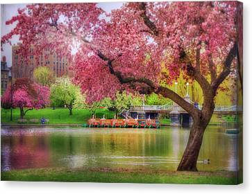 Canvas Print featuring the photograph Spring Afternoon In The Boston Public Garden - Boston Swan Boats by Joann Vitali