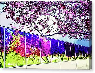 Spring Architectural Abstract Canvas Print by Steve Ohlsen