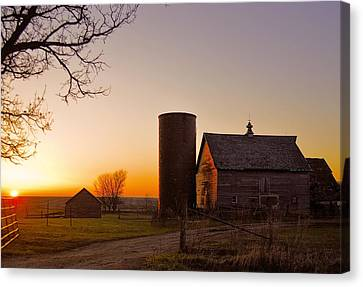 Spring At Birch Barn 2 Canvas Print by Bonfire Photography