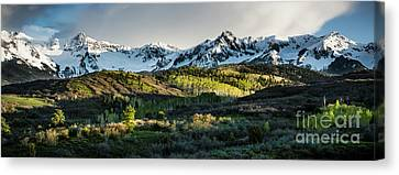 Canvas Print featuring the photograph Spring At Dallas Divide  by The Forests Edge Photography - Diane Sandoval